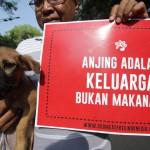 Ini Dia Bahaya Konsumsi Daging Anjing, Yakin Masih Nekat Makan?