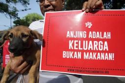 Budaya Kuliner Daging Anjing di 5 Daerah