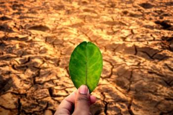 Kekeringan Ekstrem, 5 Daerah Tak Hujan 2 Bulan