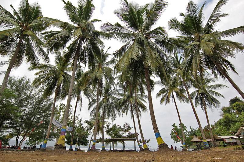 pesisir selatan Jawa