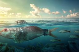 Jadi Sampah di Laut, Ini Barang-Barang yang Paling Sulit Terurai
