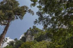 Keunikan 5 Tempat Wisata di Provinsi Termuda di Indonesia