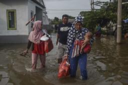 Mengintai Seusai Banjir, Ini yang Harus Diketahui soal Leptospirosis