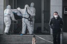 Virus Misterius China Dinamai nCov, Sudah Sampai Thailand-Korea