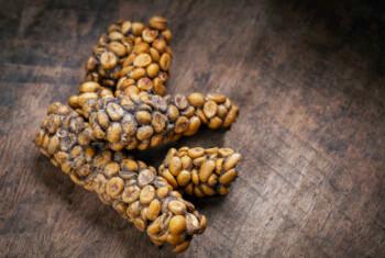 Kopi Luwak Bermula dari Tak Sengaja Kini Jadi Termahal di Dunia