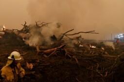 Riwayat Kebakaran Dahsyat Australia 1980-2020