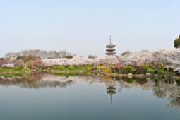 Pesona Wuhan Sebelum Diisolasi Akibat Virus Corona