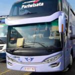 Bus Jepang Vs Bus Eropa, Siapa Jadi Jawara di Indonesia?