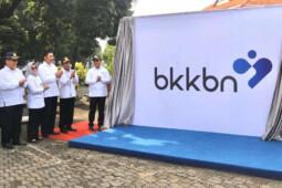 Logo Baru BKKBN, Antara Cinta dan Kupu-Kupu