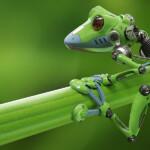 Robot Pakai DNA Makhluk Hidup, Ini Keunggulan Xenobot