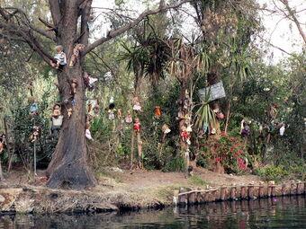 Pulau Isla de Las Munecas, Meksiko (wikipedia)