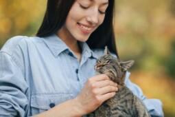 Begini Cara Kucing Tunjukkan Kasih Sayang, Nomor 5 dan7 Bikin Jengkel