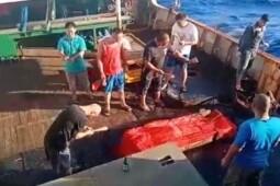 Ungkap Berita Kasus ABK di Kapal China, Ini Fakta Youtuber Jang Hansol