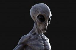 Sejumlah Penemuan yang Diklaim sebagai Alien, Benarkah Mereka Ada?