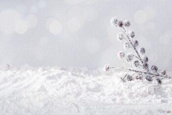 Viral Embun Es di Dieng, Hati-Hati Efeknya Jika Terkena Kulit