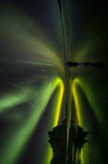 Tentang Aurora, Fenomena Cahaya Indah di Langit Buruan Para Traveler