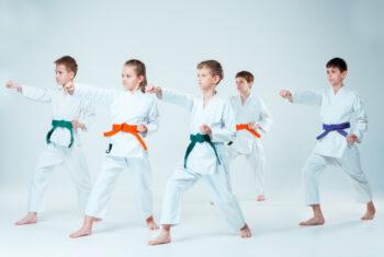 Memilih Jenis Olahraga Bela Diri untuk Anak dan Hal-Hal yang Perlu Diperhatikan