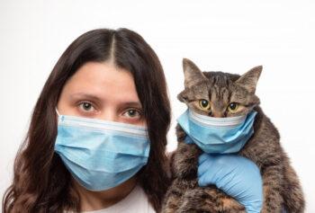 Kucing dan Anjing Membutuhkan Vaksin Virus Corona Sendiri, Kenapa?