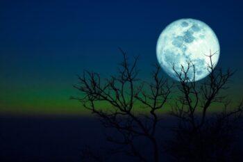 Wah! Wahana Ini Siap Menggali Bulan untuk Penelitian