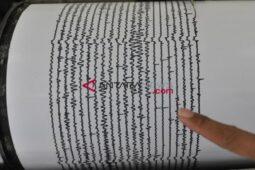 Fakta-Fakta Seputar Gempa Jepang Magnitudo 7,3