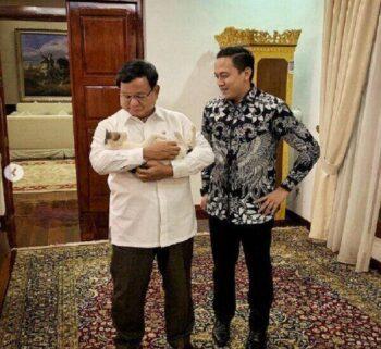 Lagi Ramai Dicari di Instagram! Ini Foto Lucu Kucing Viral Bobby Milik Prabowo